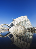 Science Museum  Architect Santiago Calatrava  City of Arts and Sciences  Valencia  Spain  Europe