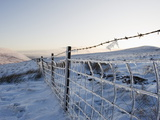 Ice Covered Fence on Pen Y Fan Mountain  Brecon Beacons National Park  Powys  Wales