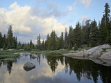 Little Bear Creek at Sunrise  Shoshone National Forest  Montana