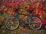 Bicycle  Leipzig  Saxony  Germany  Europe