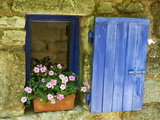 Detail of Windowbox and Shutters  Saignon Village  Vaucluse  Provence  France  Europe
