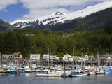 Thomas Basin Boat Harbor in Ketchikan  Southeast Alaska  United States of America  North America