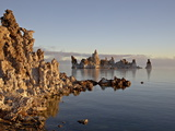 Early Morning Light on the Tufa Formations  Mono Lake  California  USA