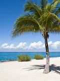 Beach at Chankanaab Park  Isla De Cozumel  Cozumel  Off the Yucatan  Mexico