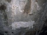 Rock Art  White Paintings  Elephant and Rain Snake  Tsodilo Hills  Ngamiland  Botswana  Africa