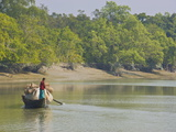 Little Rowing Boat in the Swampy Areas of the Sundarbans  UNESCO World Heritage Site  Bangladesh
