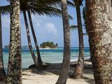 Islands in the San Blas Archipelago in the Caribbean Sea  Panama  Central America