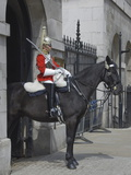 A Horse Guard in Whitehall  London  England  United Kingdom  Europe