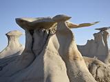 Bisti Wing  Bisti Wilderness  New Mexico  United States of America  North America