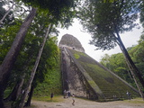 Tourists Climbing a Pyramid in the Forest  Mayan Ruins  Tikal  Guatemala