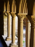 Finely Carved Capitals in the Cloisters  Iona Abbey  Isle of Iona  Scotland  United Kingdom  Europe