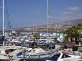 Puerto Colon  Playa De Las Americas  Tenerife  Canary Islands  Spain  Atlantic  Europe