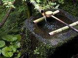 A Tsukubai With Bamboo Ladle in a Garden at Sanzenin Temple in Ohara  Kyoto  Japan