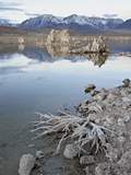 Tufa Formations and Shore  Mono Lake  California  USA