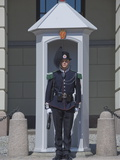 Sentry Duty at the Royal Palace  Oslo  Norway  Scandinavia  Europe