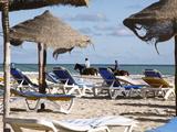 Beach Scene on the Mediterranean Coast in the Tourist Zone  Djerba Island  Tunisia