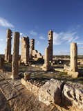 Pillars of the Church of St Servus at the Roman Ruins of Sbeitla  Tunisia  North Africa  Africa