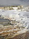 Main Terrace Hot Spring With Snow  Mammoth Hot Springs  Yellowstone National Park  Wyoming  USA