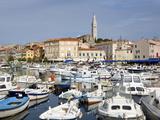 View Across the Harbour  Rovinj (Rovigno)  Istria  Croatia  Europe