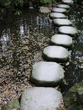 Tenjuan Wet Garden in Nanzen Ji Temple  Kyoto  Japan  Asia