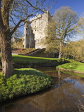Blarney Castle in Springtime  County Cork  Munster  Republic of Ireland  Europe