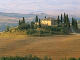 Sunrise Near San Quirico D'Orcia  Val D'Orcia  Siena Province  Tuscany  Italy  Europe