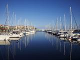 Argeles Port  Argeles Sur Mer  Cote Vermeille  Languedoc Roussillon  France  Europe