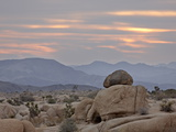 Cloudy Sunrise  Joshua Tree National Park  California  United States of America  North America