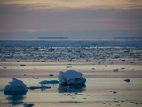 Ice Floe in Midnight Light  Southern Ocean  Antarctic  Polar Regions