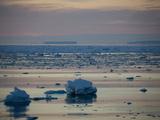 Ice Floe in Midnight Light  Southern Ocean  Antarctic  Polar Regions