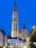 Tower of Onze Lieve Vrouwekathedraal Illuminated at Night  Antwerp  Flanders  Belgium  Europe