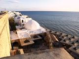 Waterfront Buildings of the Medina  Hammamet  Tunisia  North Africa  Africa