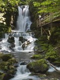 Dickson Falls in Fundy National Park  New Brunswick  Canada  North America
