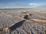 Chott El Jerid  Flat Dry Salt Lake Between Tozeur and Kebili  Tunisia  North Africa  Africa
