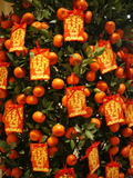 Tangerine Good Luck Symbols  Chinese New Year Decoration  Macao  China  Asia