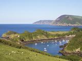Watermouth Harbour  Devon  England  United Kingdom  Europe