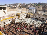 Tannery  Fez  UNESCO World Heritage Site  Morocco  North Africa  Africa