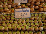 Escargot (Edible Land Snails) For Sale at Local Market in Paris  France  Europe