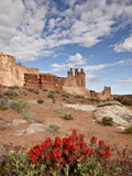 The Three Gossips and Common Paintbrush (Castilleja Chromosa)  Arches National Park  Utah  USA