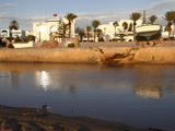 Canal and Harbour Front  Hammamet  Tunisia  North Africa  Africa