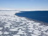 Pack Ice  Dumont D'Urville  Antarctica  Polar Regions