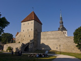 The Old City Walls of the Old Town of Tallinn  Estonia  Baltic States  Europe