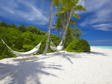 Hammock on Empty Tropical Beach  Maldives  Indian Ocean  Asia