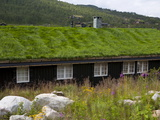 House With Green Roof  Near Tinn  Telemark  Norway  Scandinavia  Europe