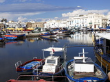 Old Port Canal and Fishing Boats  Bizerte  Tunisia  North Africa  Africa