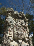 Stela D Dating From 736 Ad  Copan Archaeological Park  UNESCO World Heritage Site  Honduras