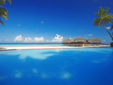 Swimming Pool  Palms and Beach Huts  Maldives  Indian Ocean  Asia