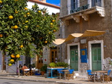 Orange Tree in a Little Village in the Lakonian Mani  Peloponnese  Greece  Europe