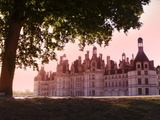 North Facade in the Early Morning  Chateau De Chambord  Loir-Et-Cher  Loire Valley  France