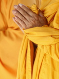 Praying Buddhist Monk  Thiais  Vale De Marne  France  Europe